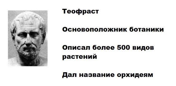 Теофраст