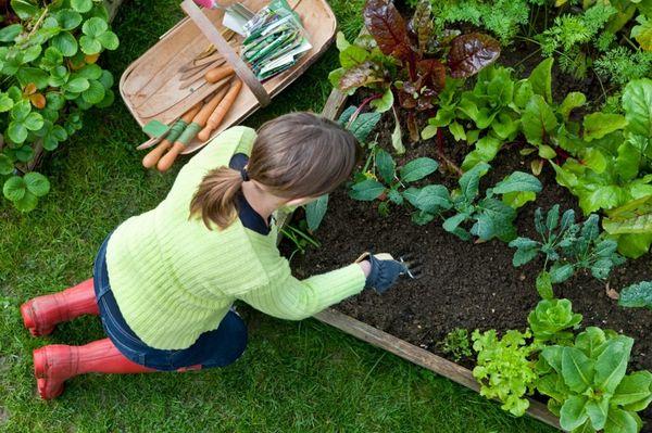 садовник цветовод