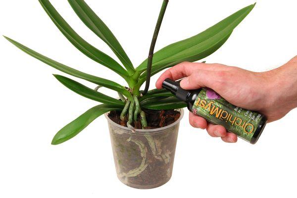 удобрения орхидея