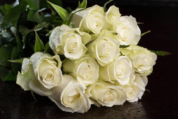Белый цвет королевы цветов говорит о чистой нежной любви