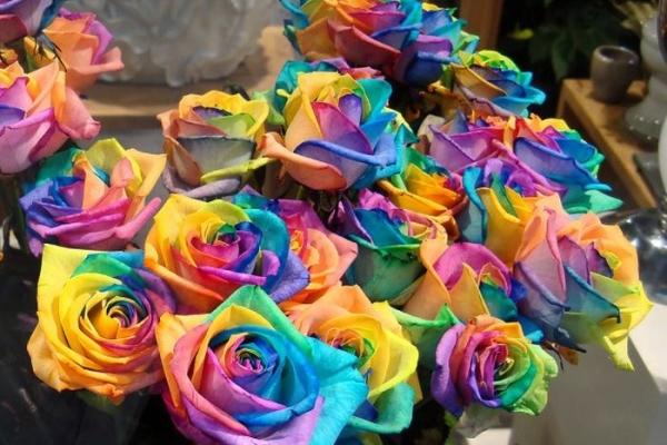 Радужные розы - что это такое и как сделать самостоятельно