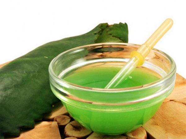Сок каланхоэ иногда вызывает жжение на коже, поэтому его разбавляют поровну с раствором новокаина
