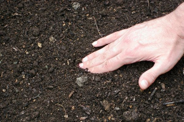 почва сад