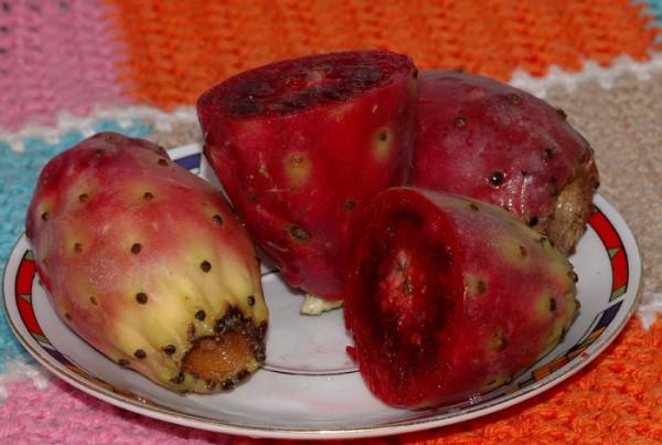 Плоды Опунции в разрезе