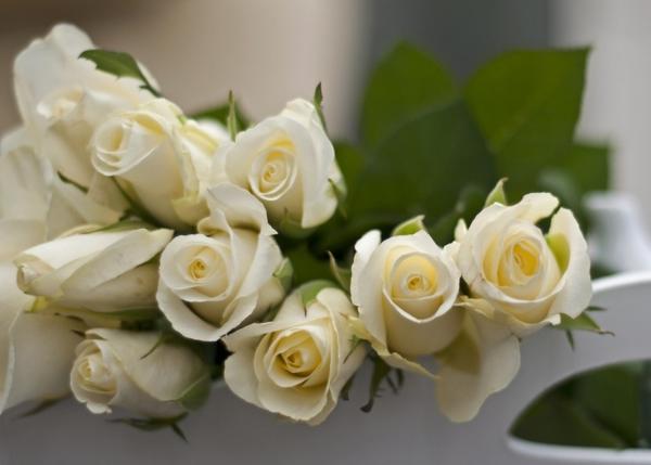 Букет белых роз выражает восхищение, заботу, искренние и теплые чувства