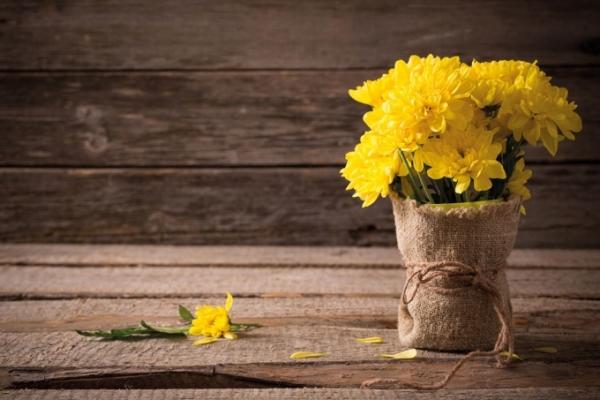 Емкость для хризантем должна быть широкой, вода теплой, место несолнечным
