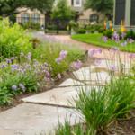 Декор садовой дорожки фиолетовыми цветами скабиозы