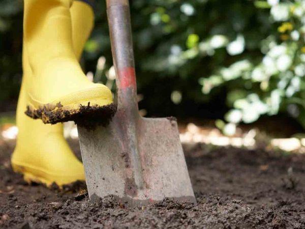 человек копает