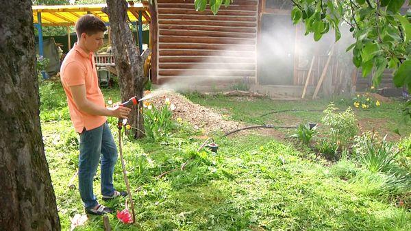 полив сад
