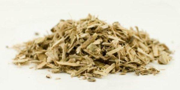 Кора Козьей ивы используется для лечения заболеваний желчного пузыря, ревматизма, при простуде