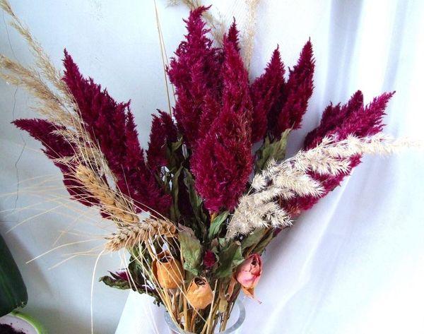 Высушенные цветы используют для поделок или икебан