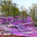 Применение в ландшафтном дизайне парков