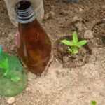Укрытие обрезком бутылки