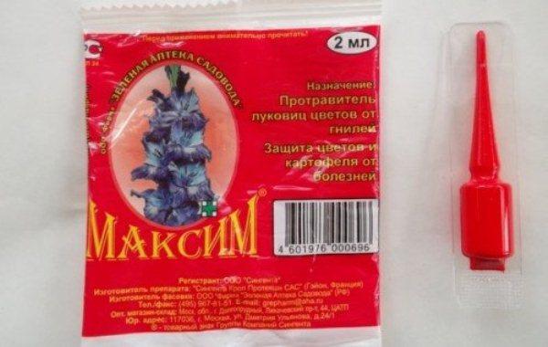 Рекомендуется разводить препарат Максим строго по инструкции в отдельной посуде, которая в дальнейшем не будет использоваться для приема или приготовления пищи
