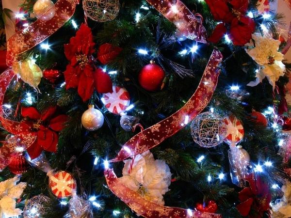 Пуансеттия на новогодней елке
