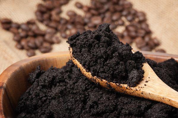 Спитой кофе повышает кислотность почвы