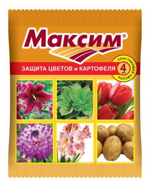 Протравитель луковиц цветов от гнили Максим