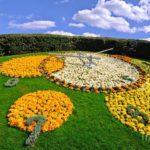 Необычные цветочные часы