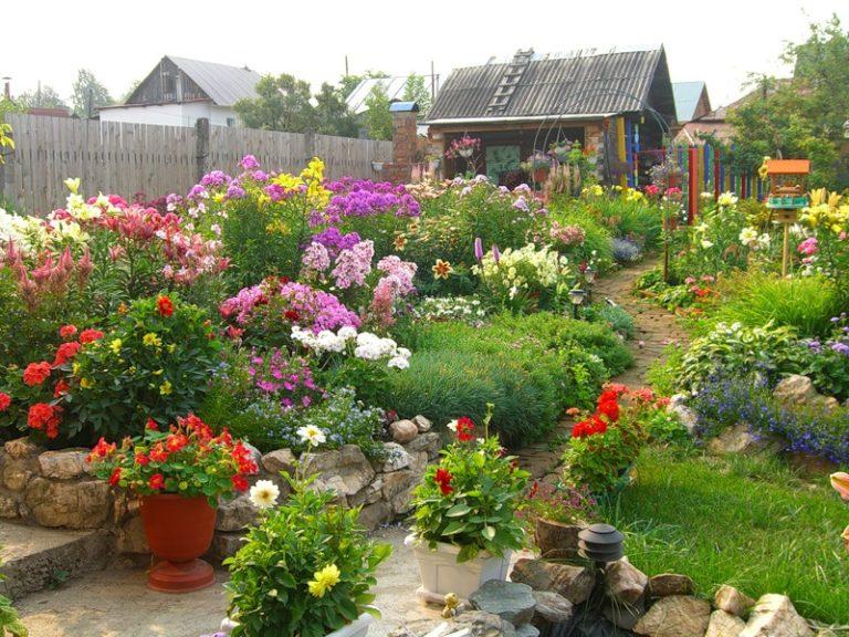 Как красиво посадить цветы на дачном участке