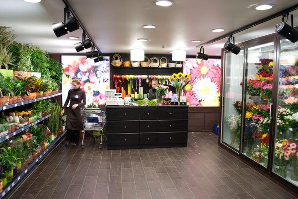 Если есть возможность сделать фото цветка - можно отправиться в цветочный магазин