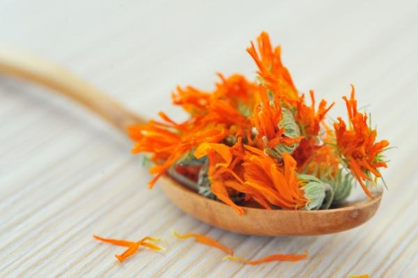 Для приготовления масла, настоев и чая используются как свежие, так и сушеные цветки
