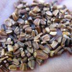 Семена кустовой хризантемы