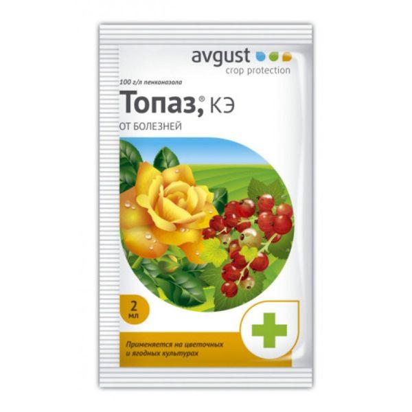 Топаз - самый эффективный препарат для борьбы с мучнистой росой