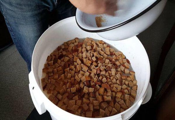 Раствор ржаного хлеба - подходящая жидкая подкормка пионов